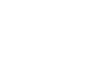 Johns Orthopedic Logo